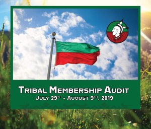 2019 Tribal Audit Coming July 29th through August 9th