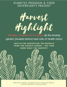 Harvest Highlight @ Kinship Garden (Behind Health Clinic)